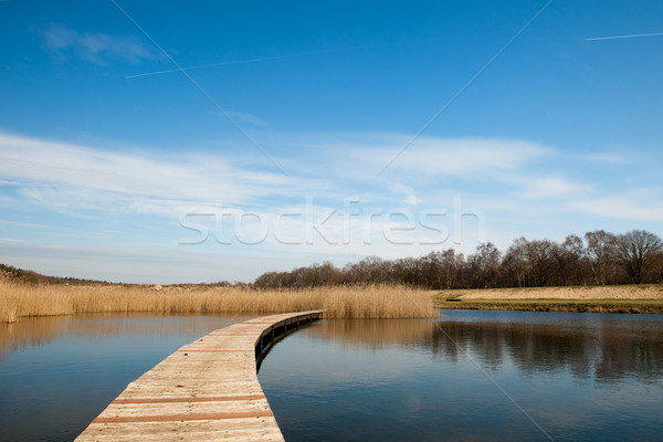 Platforms in the water Stock photo © ivonnewierink