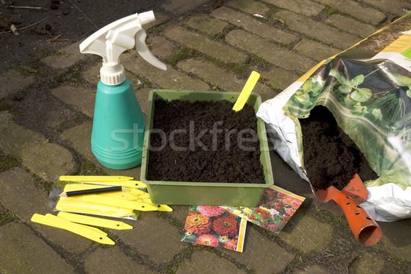 Zaaien zaden voorjaar bloemen tuin potlood Stockfoto © ivonnewierink