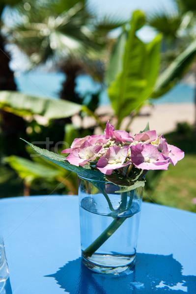 Virágok váza üveg szabadtér tengerparti kunyhó tengerpart Stock fotó © ivonnewierink