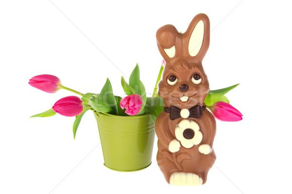 шоколадом Пасху заяц ковша розовый тюльпаны Сток-фото © ivonnewierink