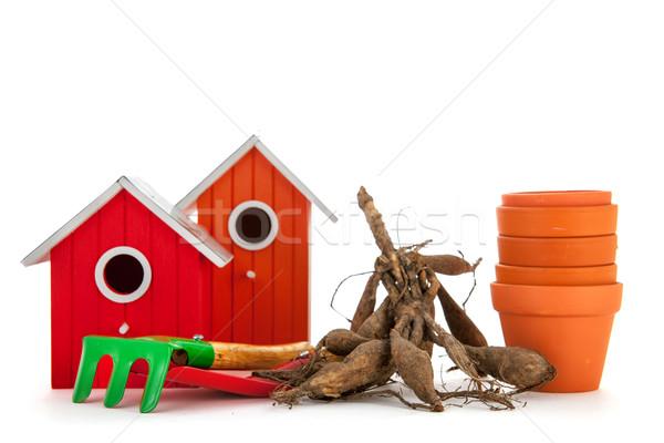 Gardening equipment Stock photo © ivonnewierink