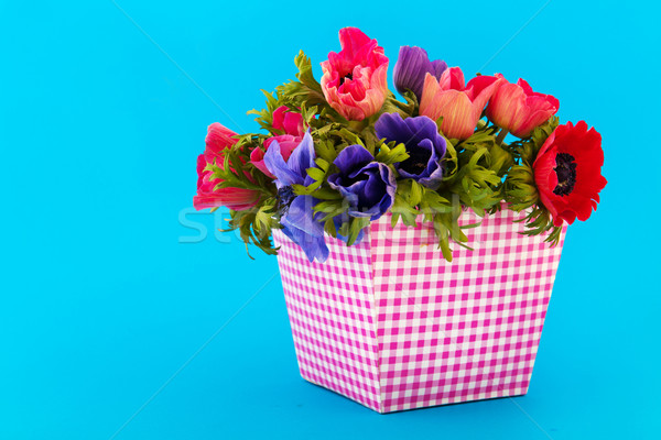 Stock photo: Bouquet Anemones on blue background