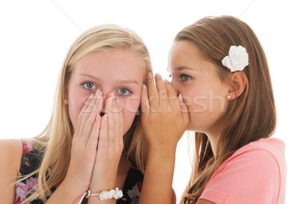 Heyecan verici haber genç kızlar dedikodu Stok fotoğraf © ivonnewierink