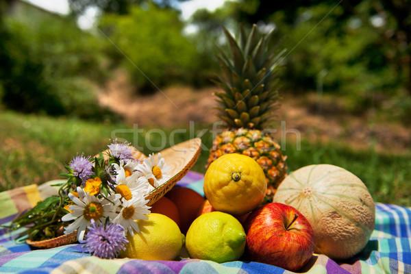 Fraîches fruits d'été extérieur nature still life alimentaire Photo stock © ivonnewierink