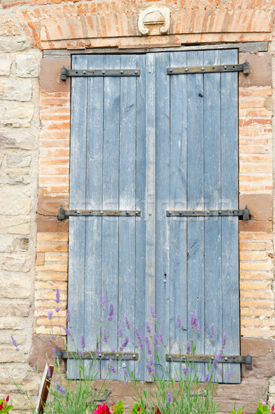 французский окна синий жалюзи Windows лаванды Сток-фото © ivonnewierink