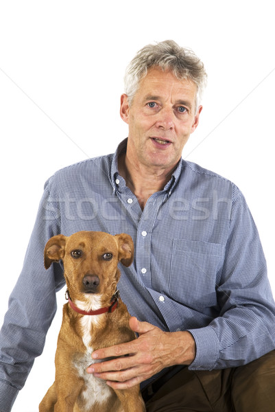 Melhor amigo cão amigos idoso animal cuidar Foto stock © ivonnewierink