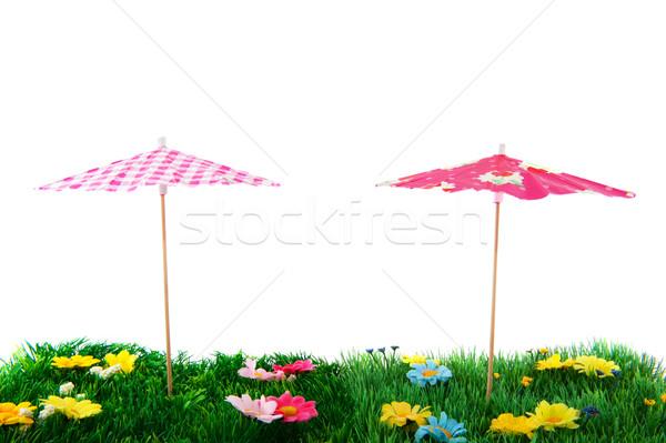 Yaz sezon çim gölge plastik kavram Stok fotoğraf © ivonnewierink
