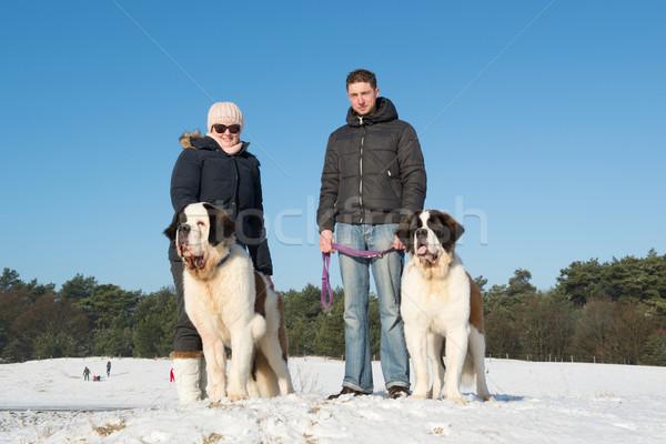 Eigentümer Rettung Hund Schnee groß Familie Stock foto © ivonnewierink
