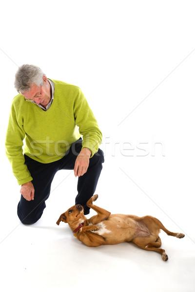 Opleiding hond ouderen man gehoorzaamheid dier Stockfoto © ivonnewierink