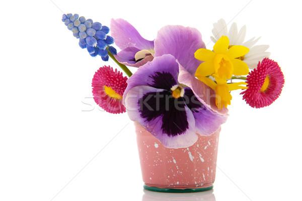 Stok fotoğraf: Bahçe · çiçekler · karışık · buket · küçük · kova