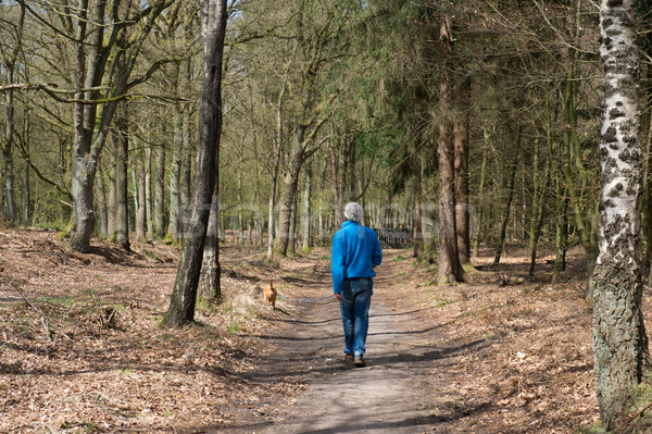 Man walking the dog Stock photo © ivonnewierink