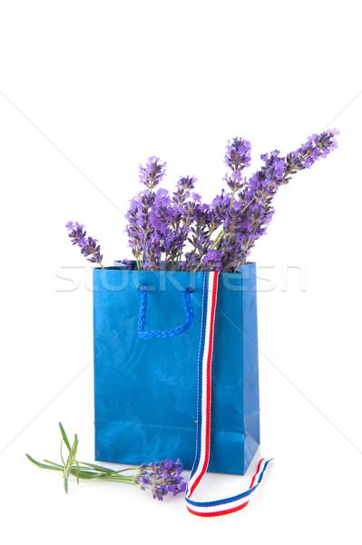 French lavender Stock photo © ivonnewierink
