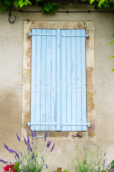 Francese finestra blu Windows lavanda Foto d'archivio © ivonnewierink