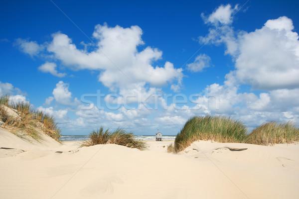 Vizbefulladás ház tengerpart holland sziget felhők Stock fotó © ivonnewierink