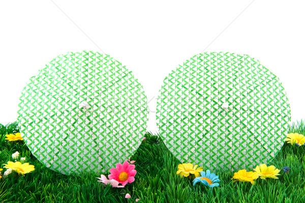 Hierba verde flores de verano viaje tropicales vacaciones Foto stock © ivonnewierink