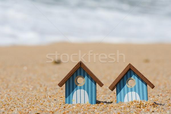 Strand miniatuur water lijn landschap zee Stockfoto © ivonnewierink