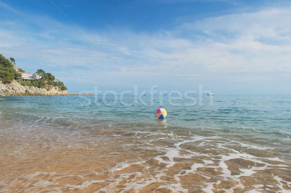 Bola de praia mar colorido inflável jogar surfar Foto stock © ivonnewierink