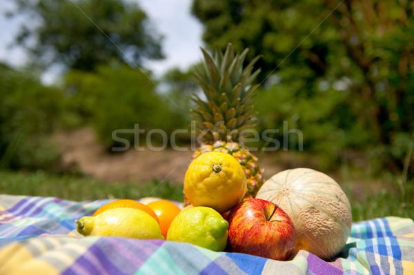 Stockfoto: Stilleven · outdoor · vruchten · bomen