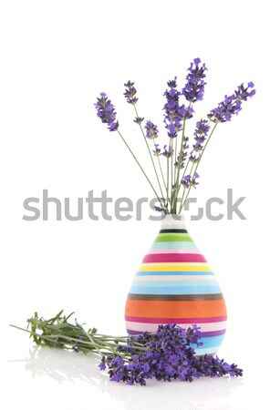Vaso lavanda verde vetro bouquet fiori Foto d'archivio © ivonnewierink