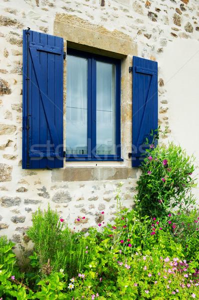 Francese finestra blu giardino fiorito outdoor Foto d'archivio © ivonnewierink
