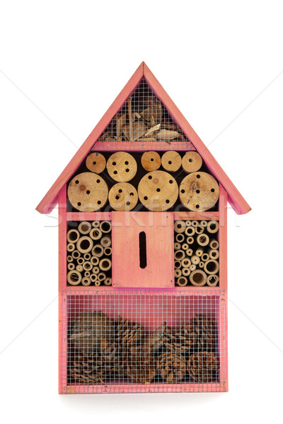 Insect hotel Stock photo © ivonnewierink