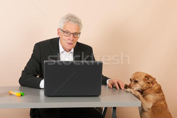 Senior business man with dog Stock photo © ivonnewierink