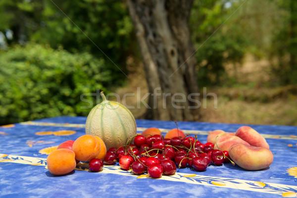 新鮮果物 フランス オリーブの木 ツリー 青 ストックフォト © ivonnewierink