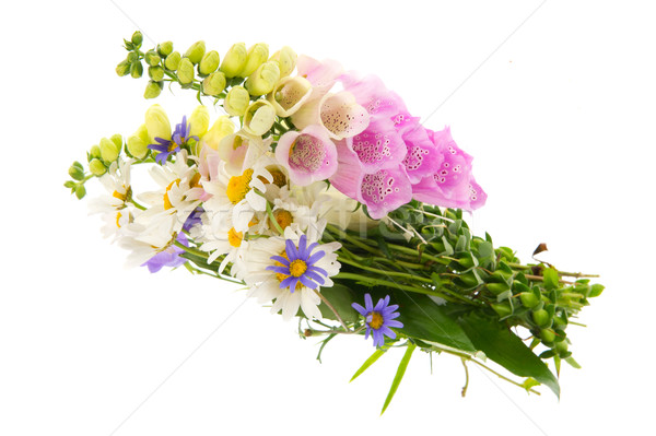 Bouquet wild folwers Stock photo © ivonnewierink