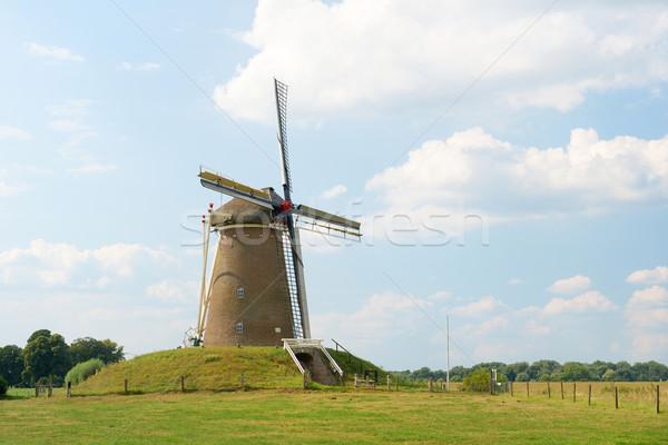 オランダ語 風車 典型的な 風景 草 建物 ストックフォト © ivonnewierink