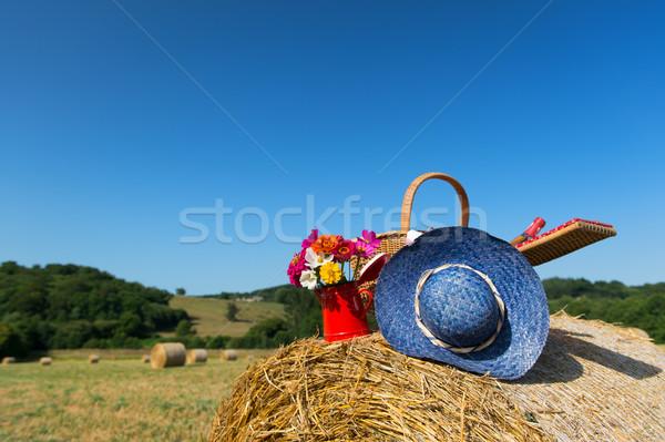 Piknik sepeti yaz şapka fransız tarım manzara Stok fotoğraf © ivonnewierink