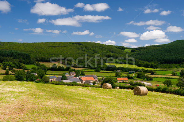 French landscape in the Bourgogne Stock photo © ivonnewierink