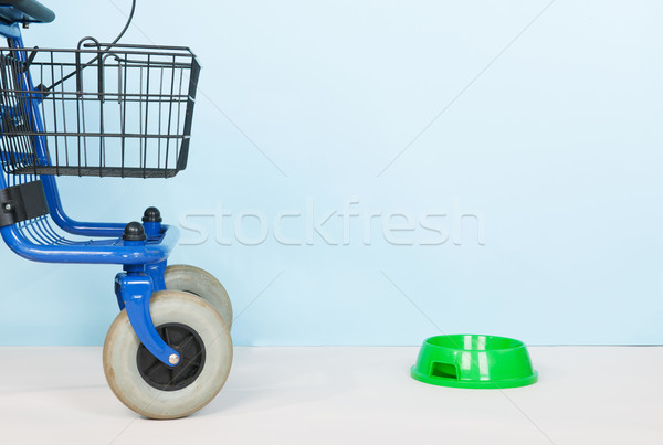 Ancianos mascotas azul alimentos tazón utilizado Foto stock © ivonnewierink
