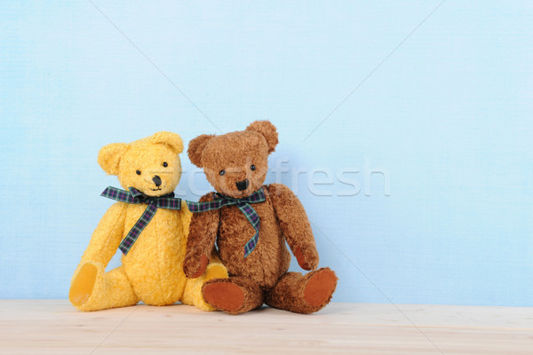 Pair of stuffed bears Stock photo © ivonnewierink