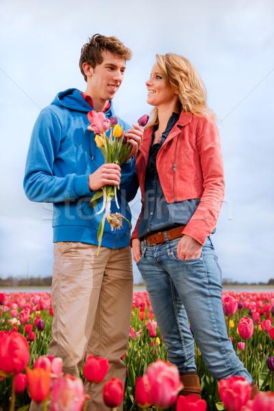 Hollanda çiçek alanları sevmek çiçekler Stok fotoğraf © ivonnewierink