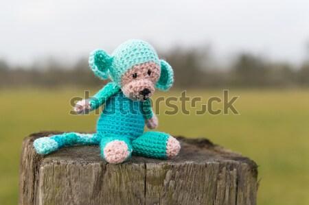 Selfmade stuffed monkey outdoor Stock photo © ivonnewierink