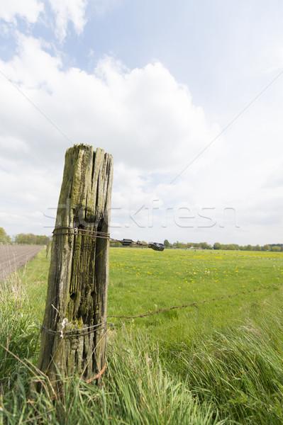 Photo stock: Vieux · bois · pôle · paysage · clôture · agriculture