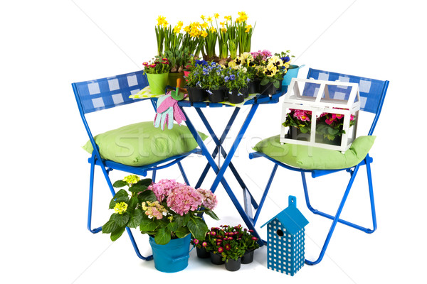 Stockfoto: Tuinieren · voorjaar · zomer · bloemen · planten · tuin