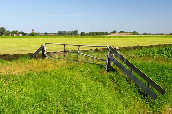 Dutch landscape in Groningen Stock photo © ivonnewierink