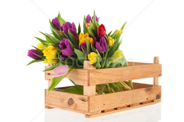 Skrzynia pełny tulipany bukiet kolorowy Zdjęcia stock © ivonnewierink