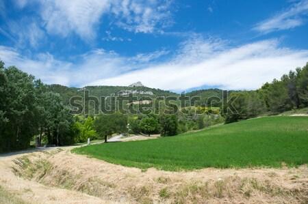 Landscape Drome Provencal in France Stock photo © ivonnewierink