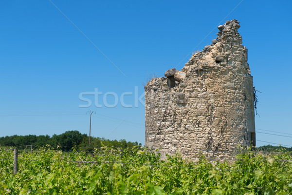 Remain of a tower in vine yard Stock photo © ivonnewierink