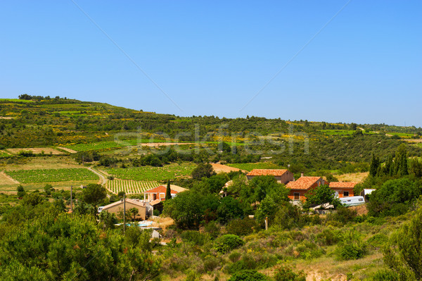 Landscape Languedoc Stock photo © ivonnewierink
