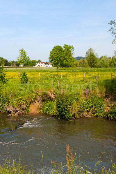 Holandês paisagem residencial rio casa primavera Foto stock © ivonnewierink