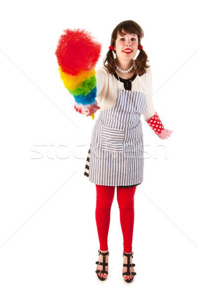 Gospodyni domowa pyłu Pióro stałego tle młodych Zdjęcia stock © ivonnewierink