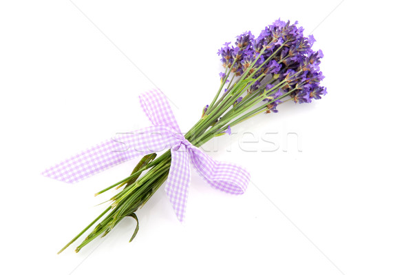 Lavender from the Provence Stock photo © ivonnewierink