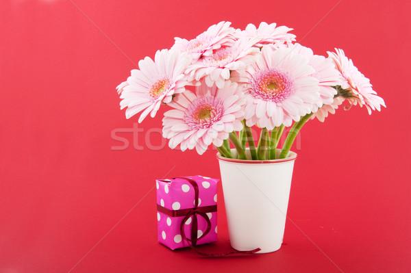 Pink Gerber on red Stock photo © ivonnewierink