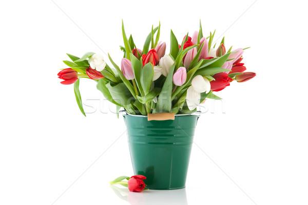 Photo stock: Vert · vase · tulipes · grand · bouquet · coloré