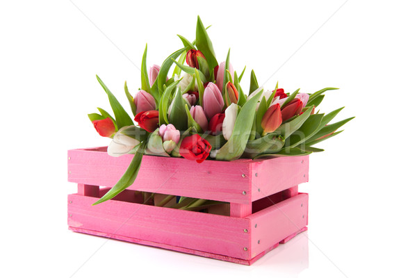 Pink crate with tulips Stock photo © ivonnewierink