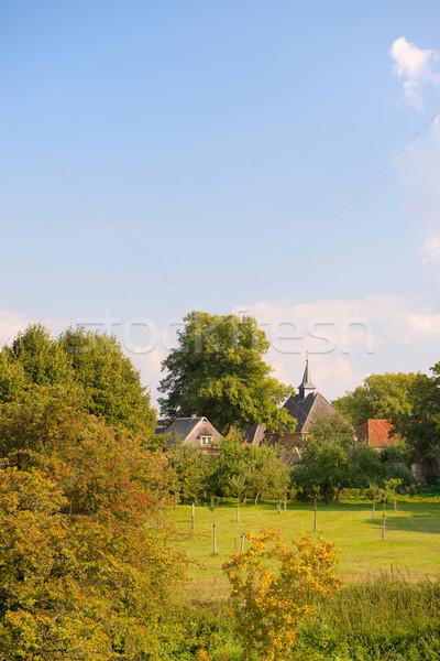 Dutch village Stock photo © ivonnewierink