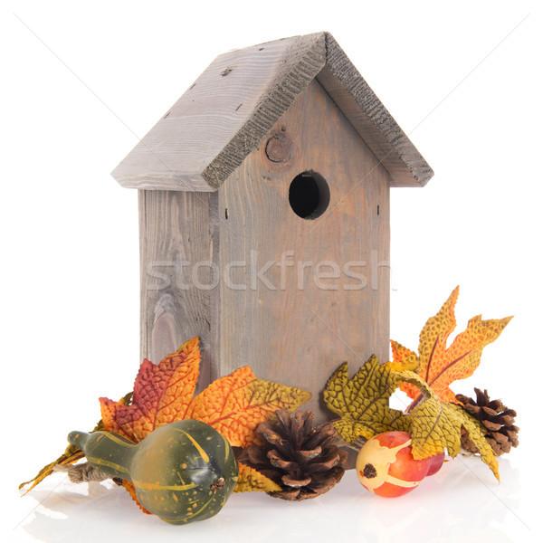 Birdhouse for birds in winter Stock photo © ivonnewierink